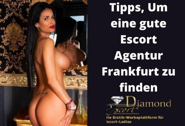 Tipps, Um eine gute Escort Agentur in Frankfurt zu finden