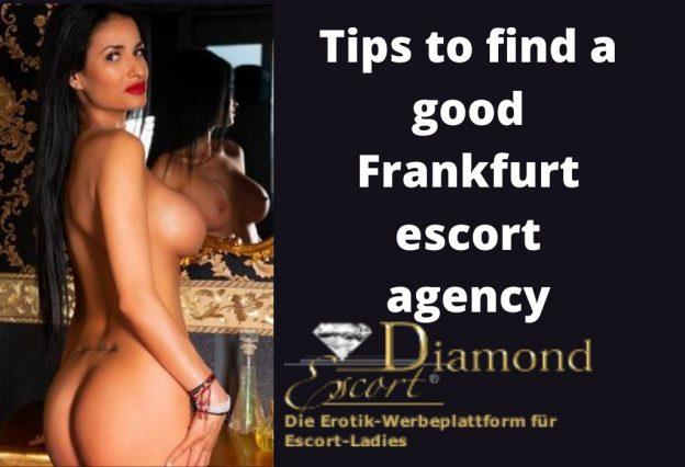 Frankfurt Escort